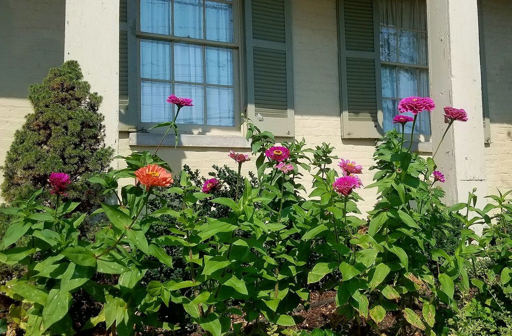 Lewisburg Historic District - Flower Garden-2.jpg