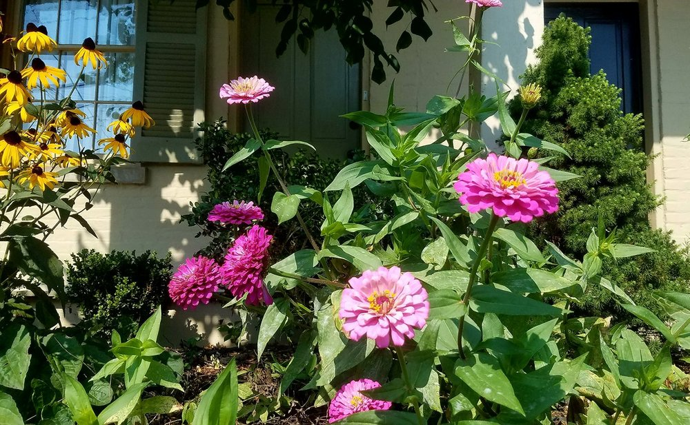 Lewisburg Historic District - Flower Garden-3.jpg