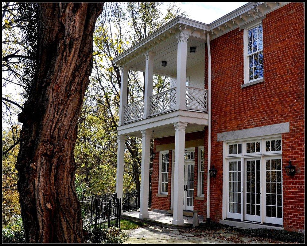 Twisted Tree - Carneal House.jpg