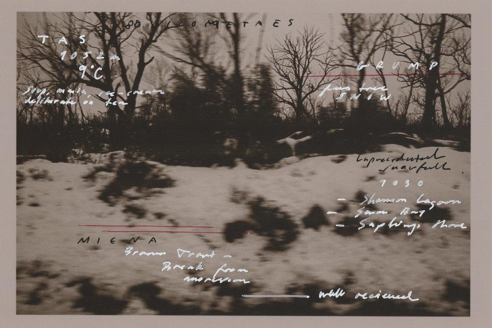 Scan 6.jpg