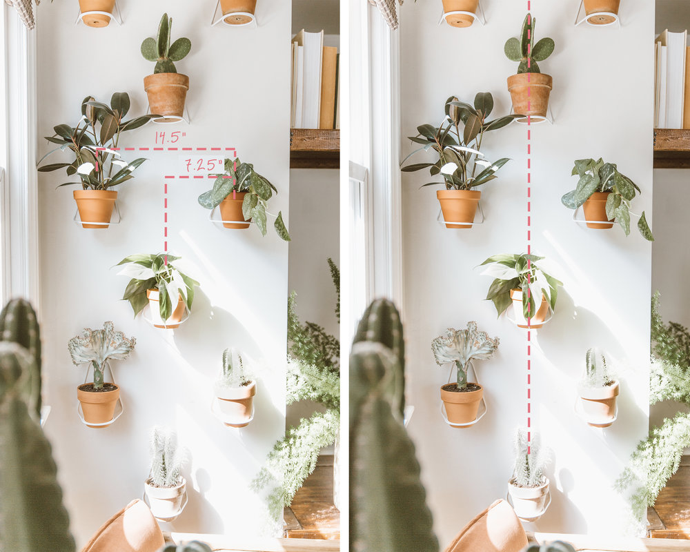 _forthehome-how-to-living-wall-step2.jpg