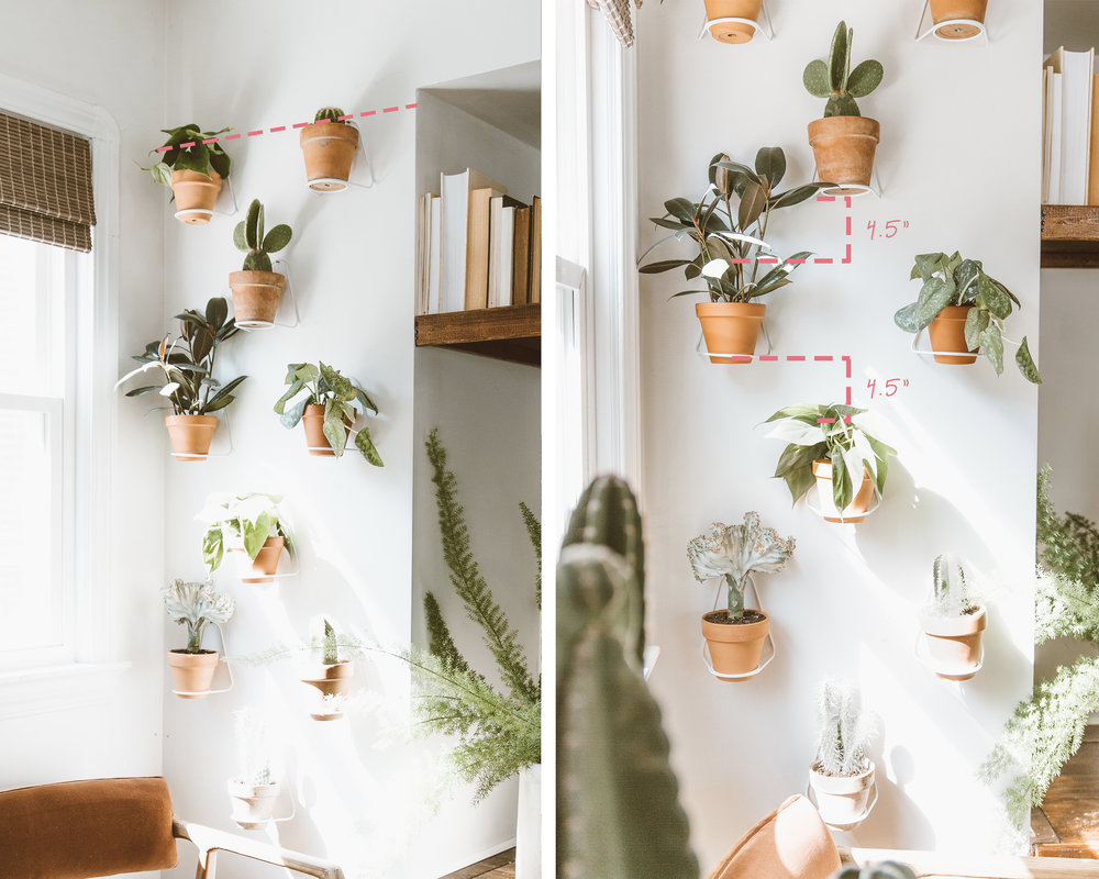 _forthehome-how-to-living-wall-step3.jpg