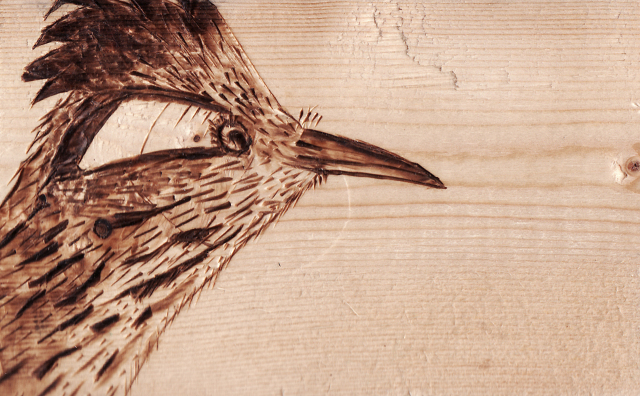 Roadrunner on Wood
