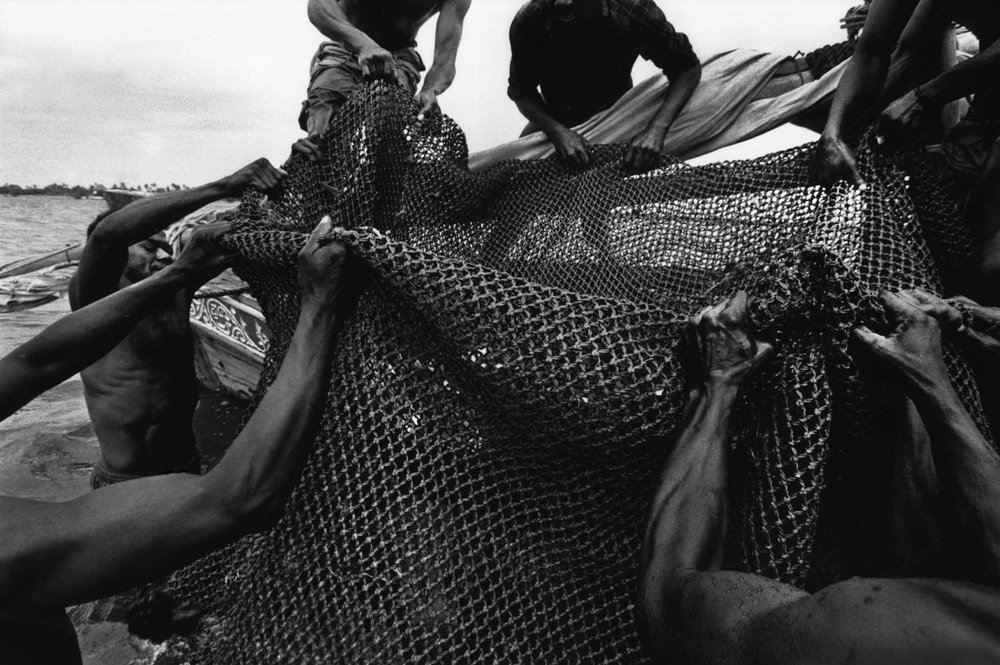 Bringing in the catch. Mombasa, Kenya. 1999