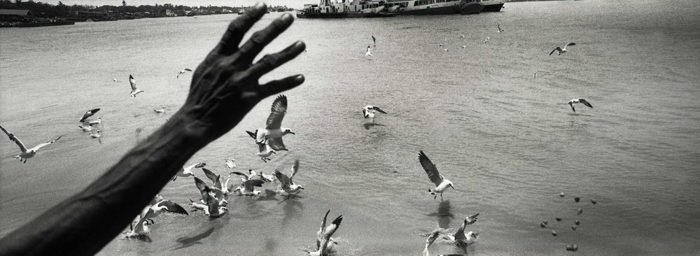"""Feeding The Gulls."" Rangoon, Burma"