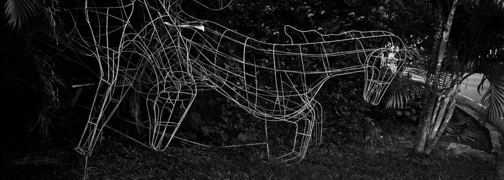 """Wire Horses"" Chiang Mai, Thailand., Thailand."