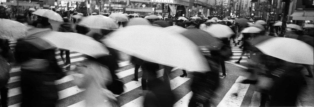 """Crossing"" Shibuya, Tokyo, Japan."
