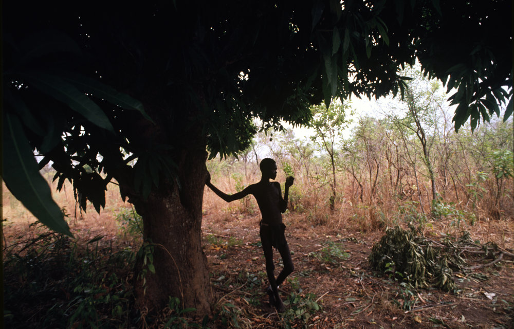 A man eats leaves from a tree during Sudan's long-running civil war. 1993