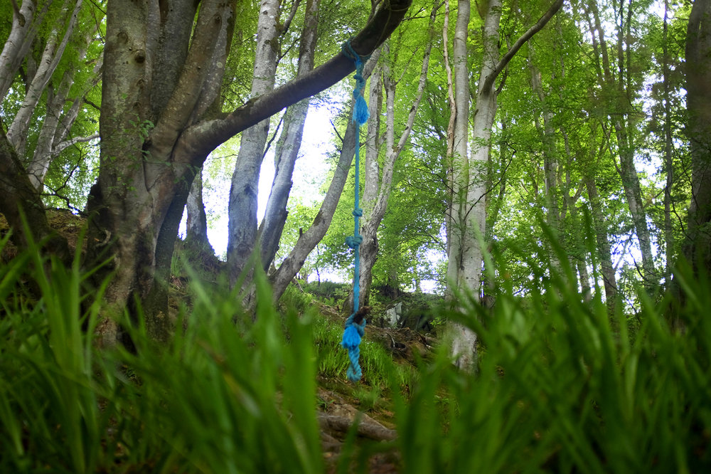 Rope swing, Tayvallich, Argyll & Bute. West Scotland.