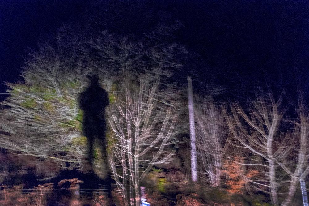 My winter shadow. Tayvallich. Argyll & Bute.