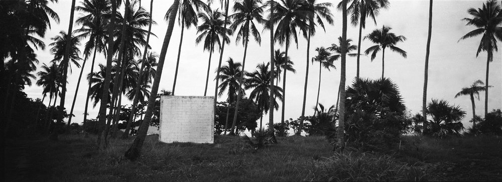 Monolith and palm trees. Phuket, Thailand 2106.