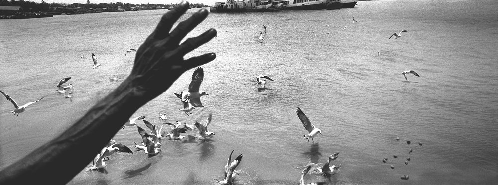 Feeding the gulls while riding the cross-river ferry. Rangoon, Burma. 2014