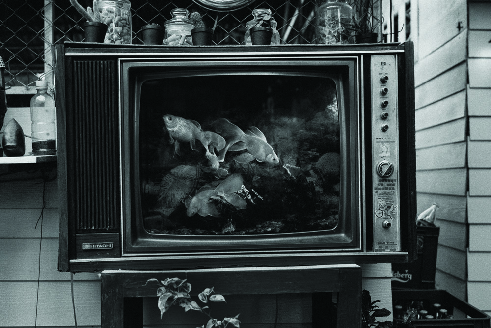 """TV Fish.' An old black and white TV converted to a goldfish bowl. Chiang Mai, Thailand. Early 2000s."