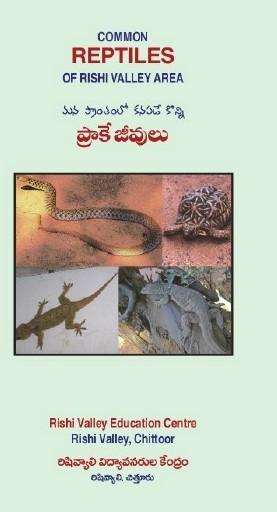 SnakeBook.jpg