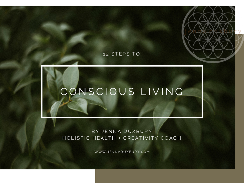 Have you downloaded your FREE copy of 12 Steps to Conscious Living yet? Click on the image above to grab yours NOW.