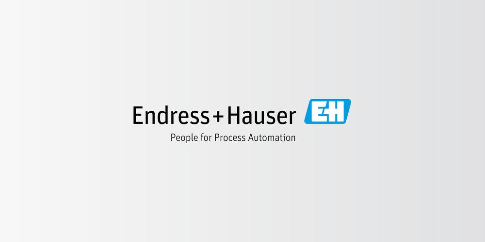 Endress+Hauser Logo Redesign 01.jpg
