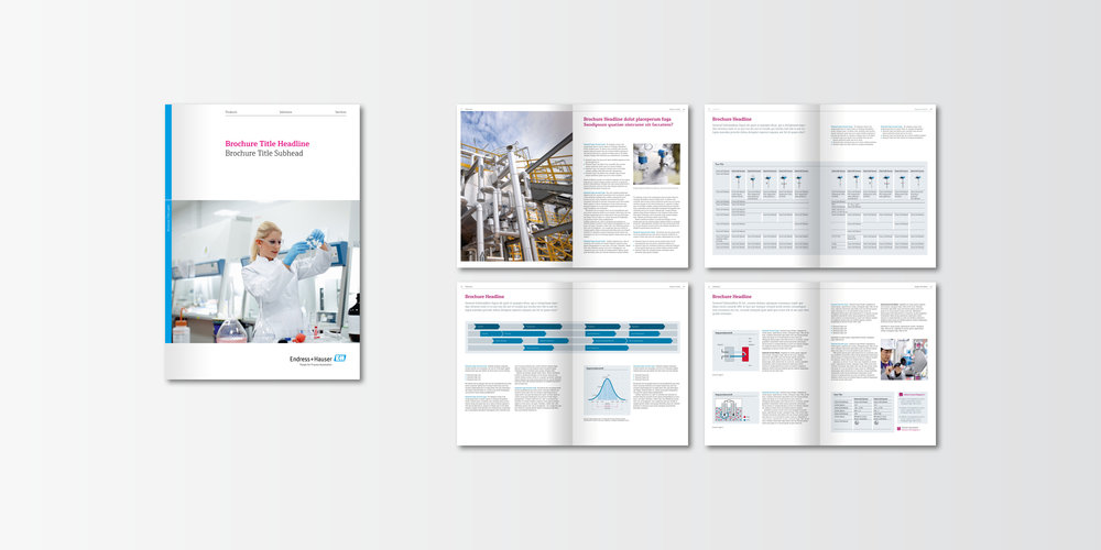Endress+Hauser Corporate Design 05.jpg