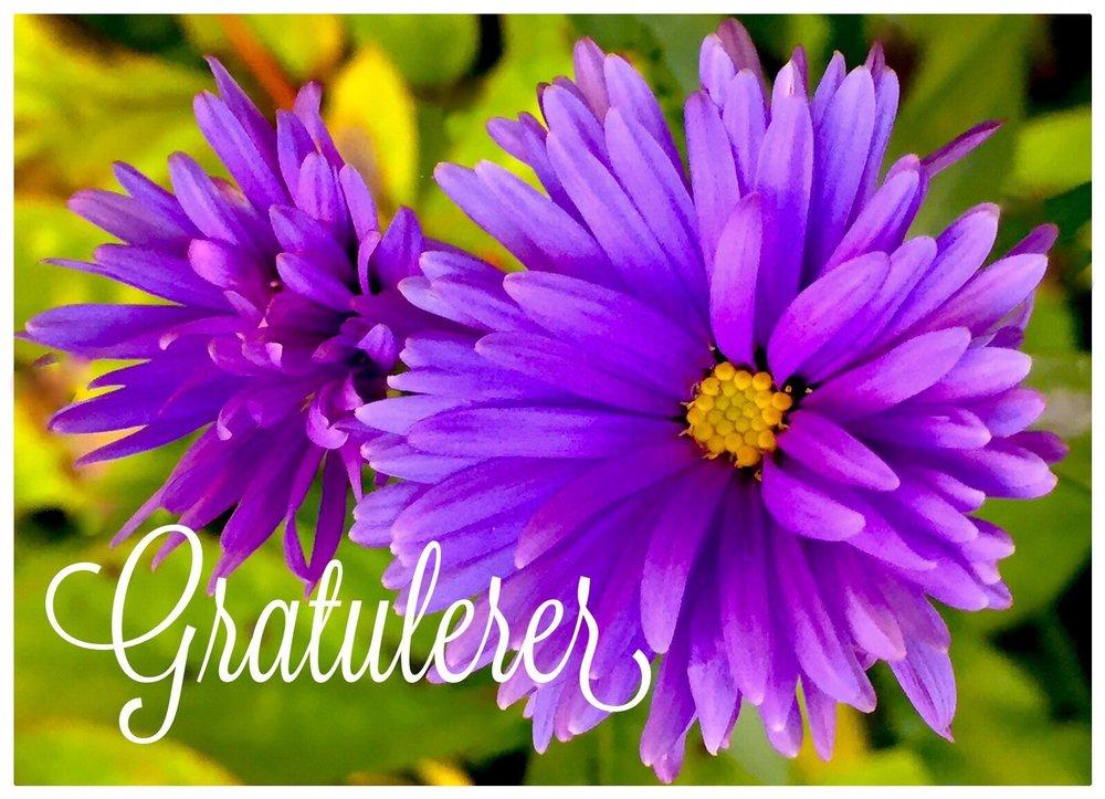 Blå blomster 20-kortpakke (002).jpg