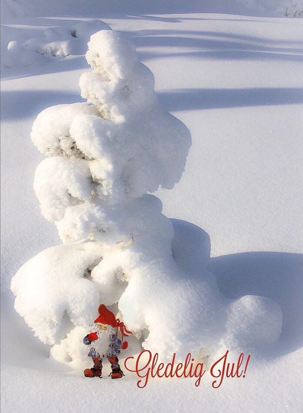 Julekort nr 4.jpg
