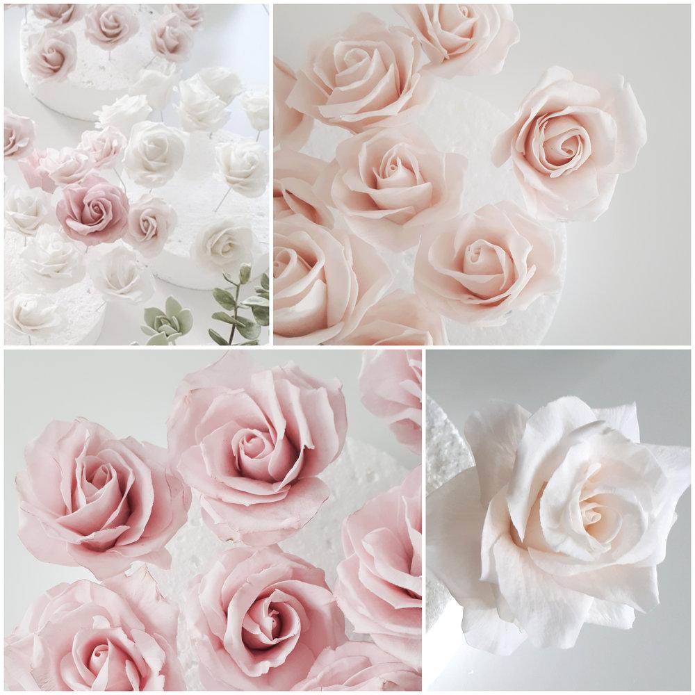 rozsa(1).jpg
