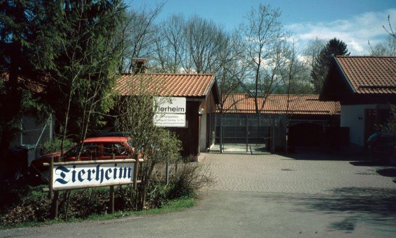 0000-Tierheim1.jpg