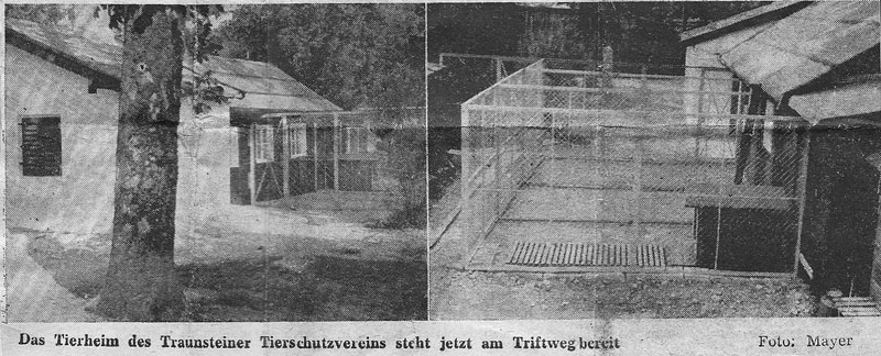 1. Tierheim in Traunstein am Triftweg