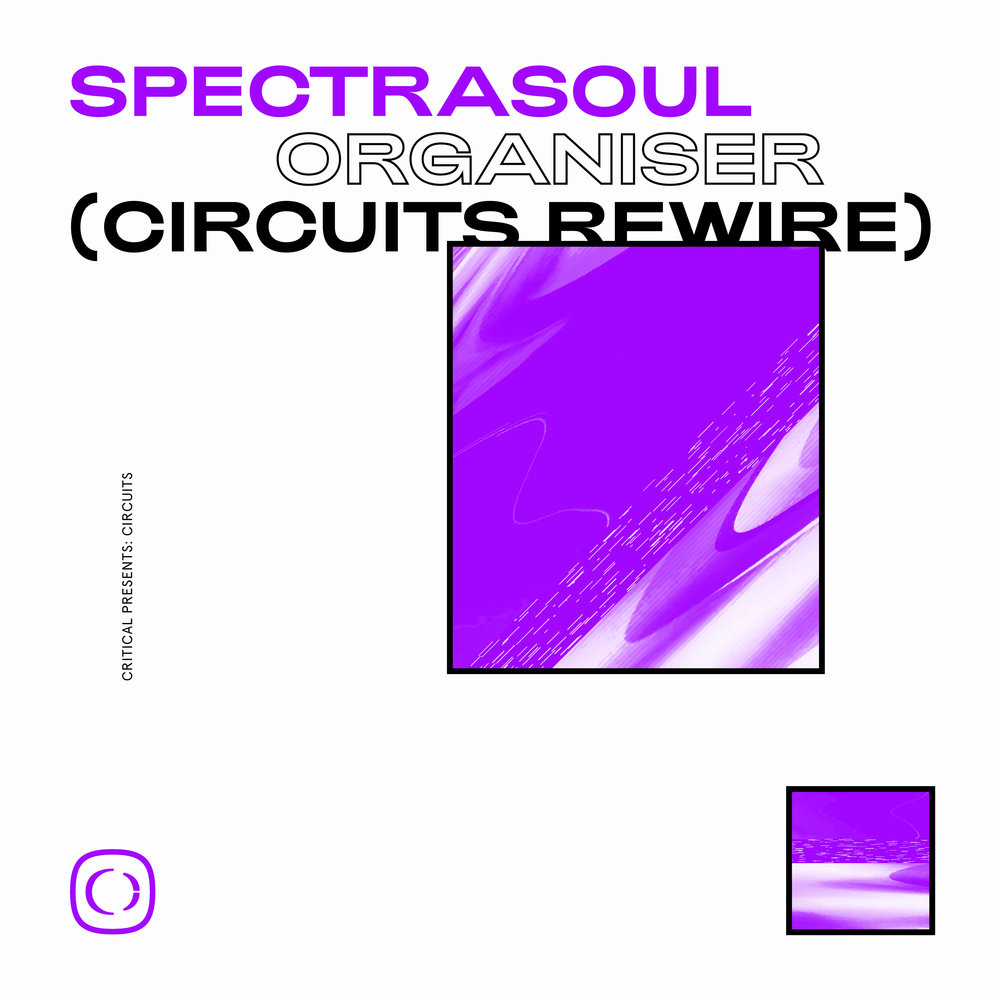 Spectrasoul - Organiser (Circuits Rewire)