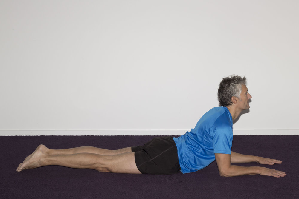 With hips and forearms flat on the floor, raise the shoulders off the floor.