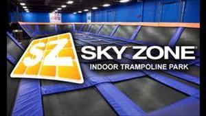 sky-zone-1.jpg