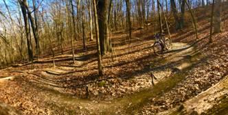 greensfelder park.jpg
