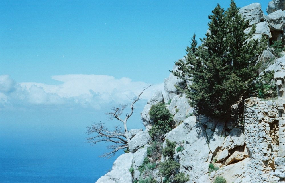 The island of copper & cypress trees // Cyprus | Travel by The Foraged Life
