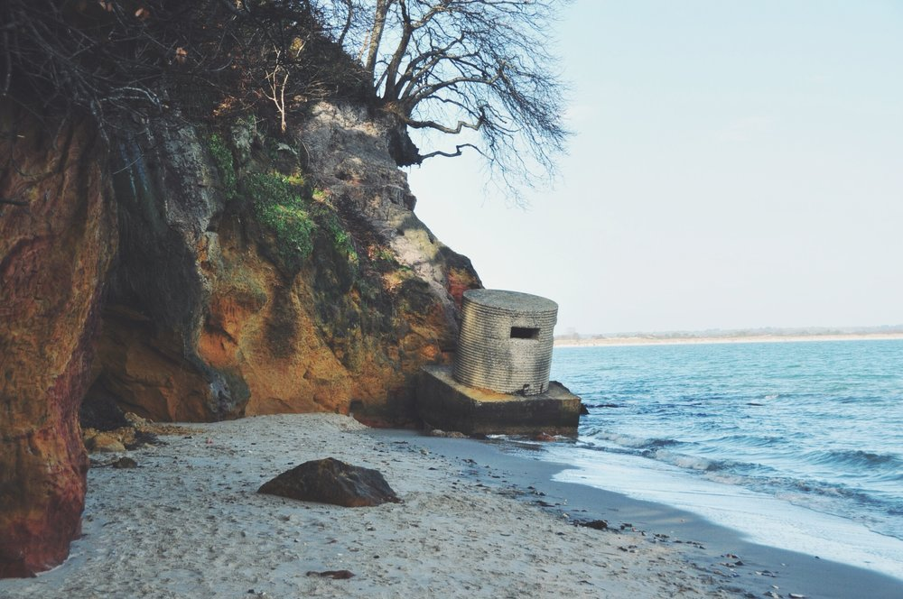 Joe's Cafe, Studland // Dorset, UK | The Foraged Life