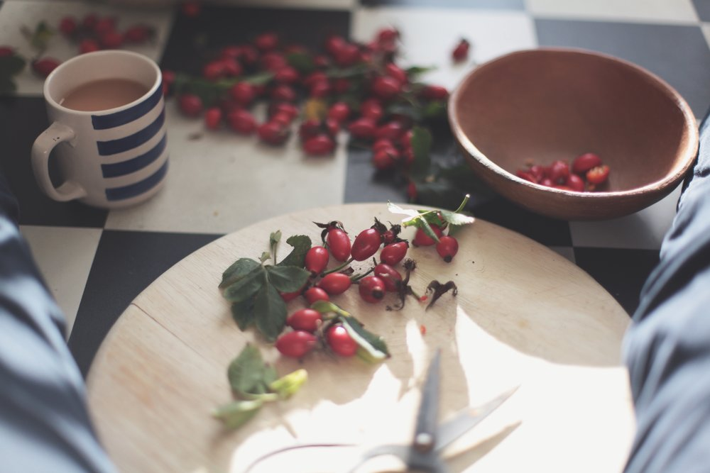 Foraged Rose Hip Syrup