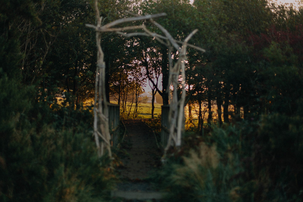 A pathway at Koa Tree Camp // Devon, UK - Eco-Friendly Travel by The Foraged Life
