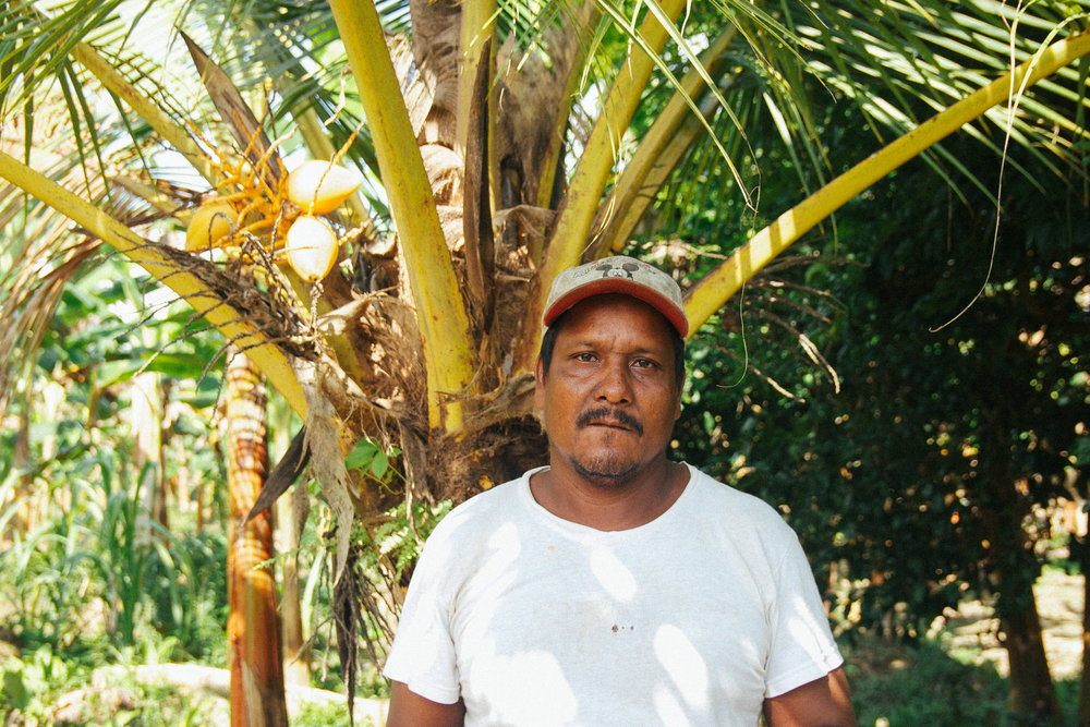 Meet Eustaquio: a Farmer Fighting for His Land // Colombia | Why knowing where your food comes from is important | The Foraged Life