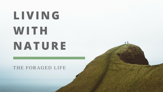 Your free living with nature guide by The Foraged Life