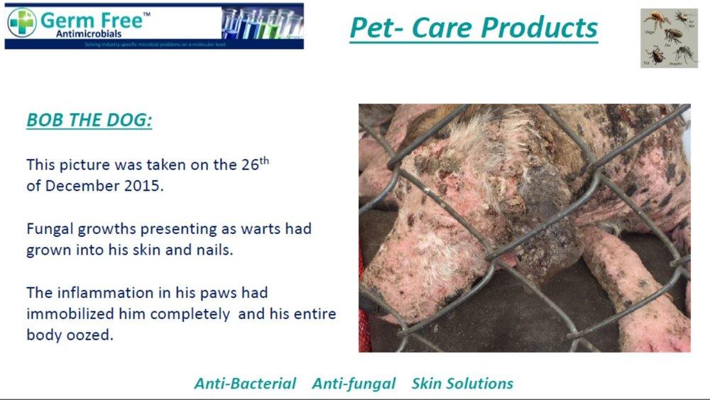 GF- Pet Care 11.JPG