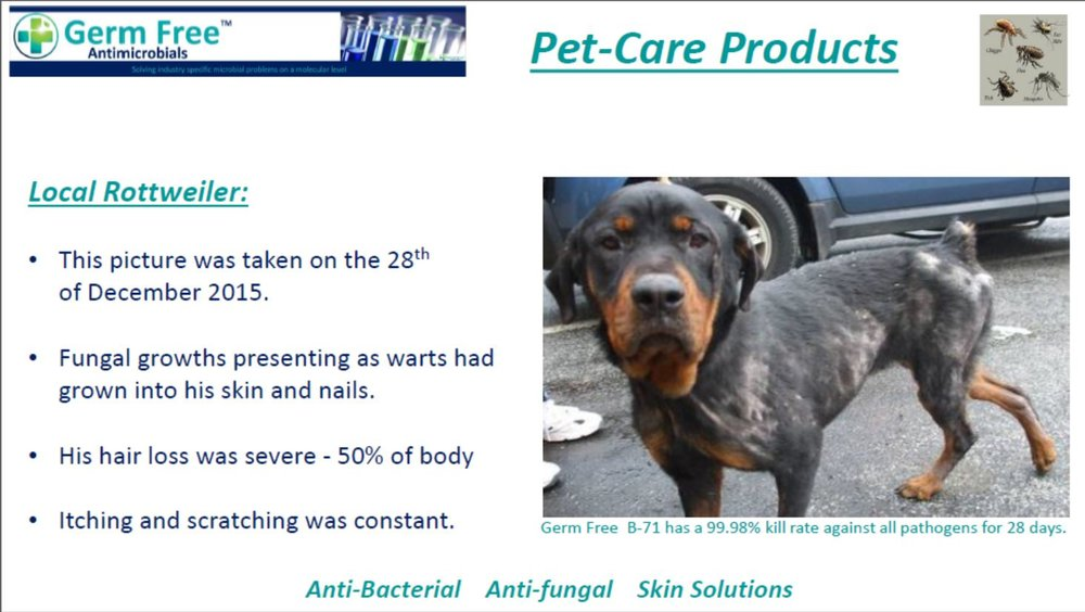 GF-Pet Care 13.JPG
