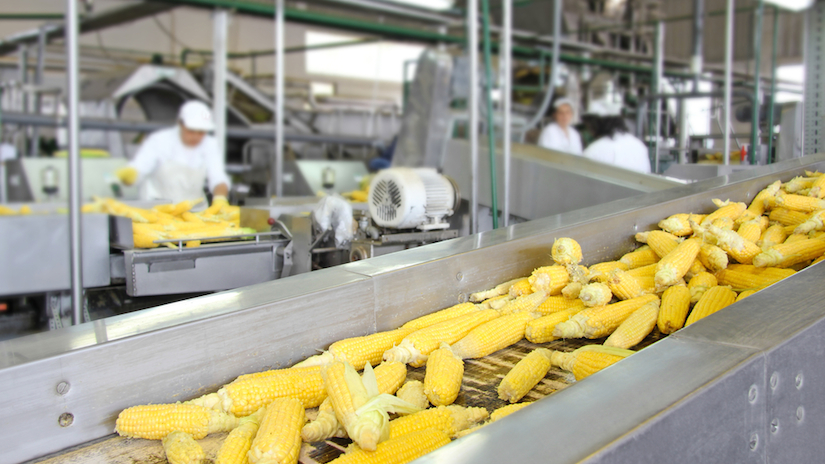 Food_Processing.jpg