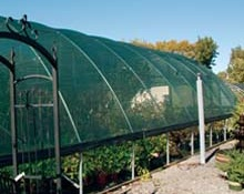 Greenhouse_Shade_4e9cd3c5c581c-5901da28e2a01.jpg