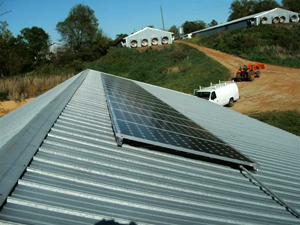 solar_poultry02.jpg