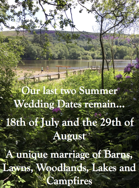 Summer Wedding Last Dates.jpg