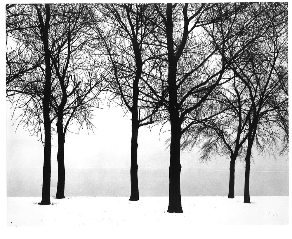 Chicago, by Harry Callahan (1950)