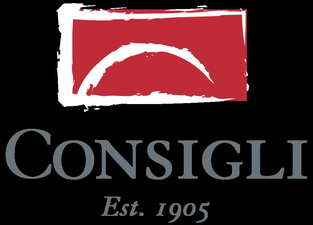 Consigl Construction SGLOGO_6x4_300_WBS-1.png