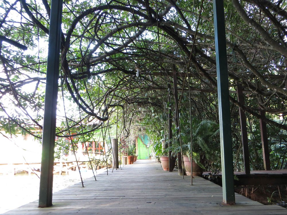 Casa Guatemala_Hotel Backpackers_Walkway.jpg