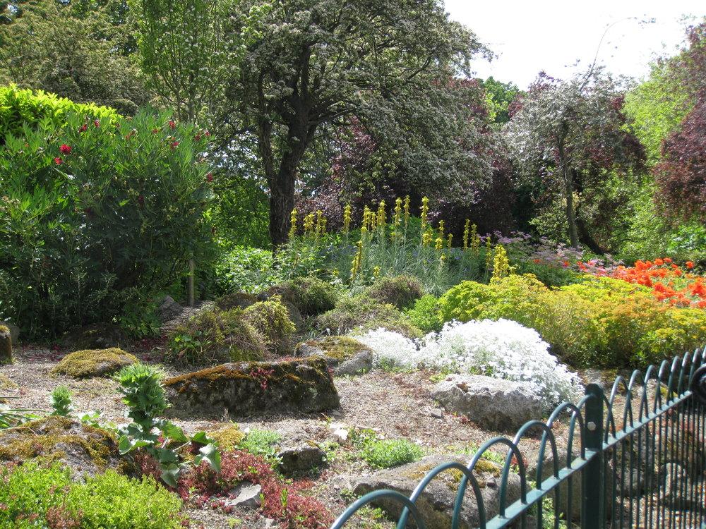 Ireland_Dublin_Asa Bush_Garden.JPG