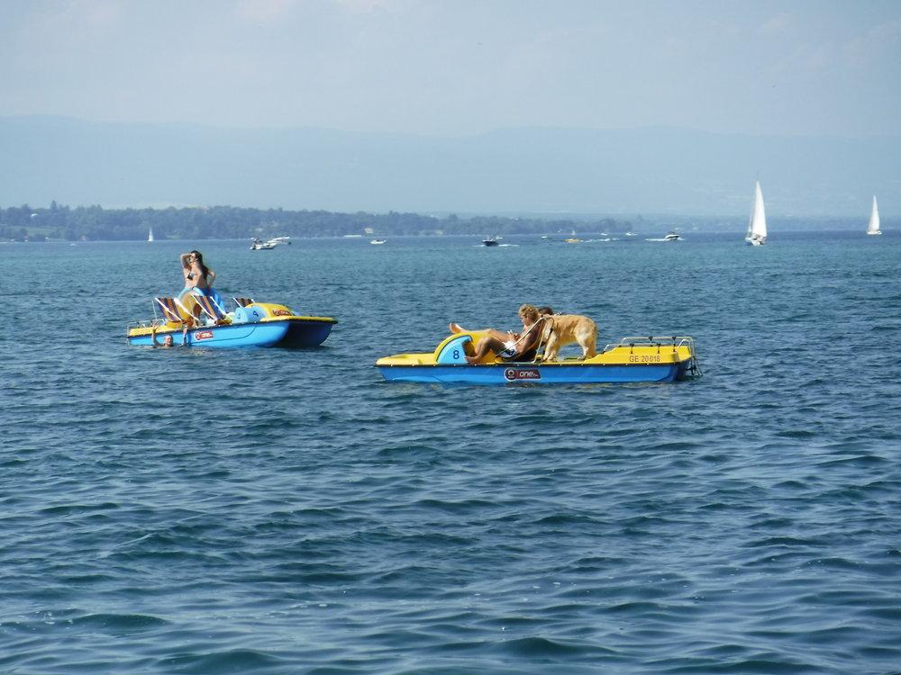 Switzerland_Geneva_Paddleboat.JPG