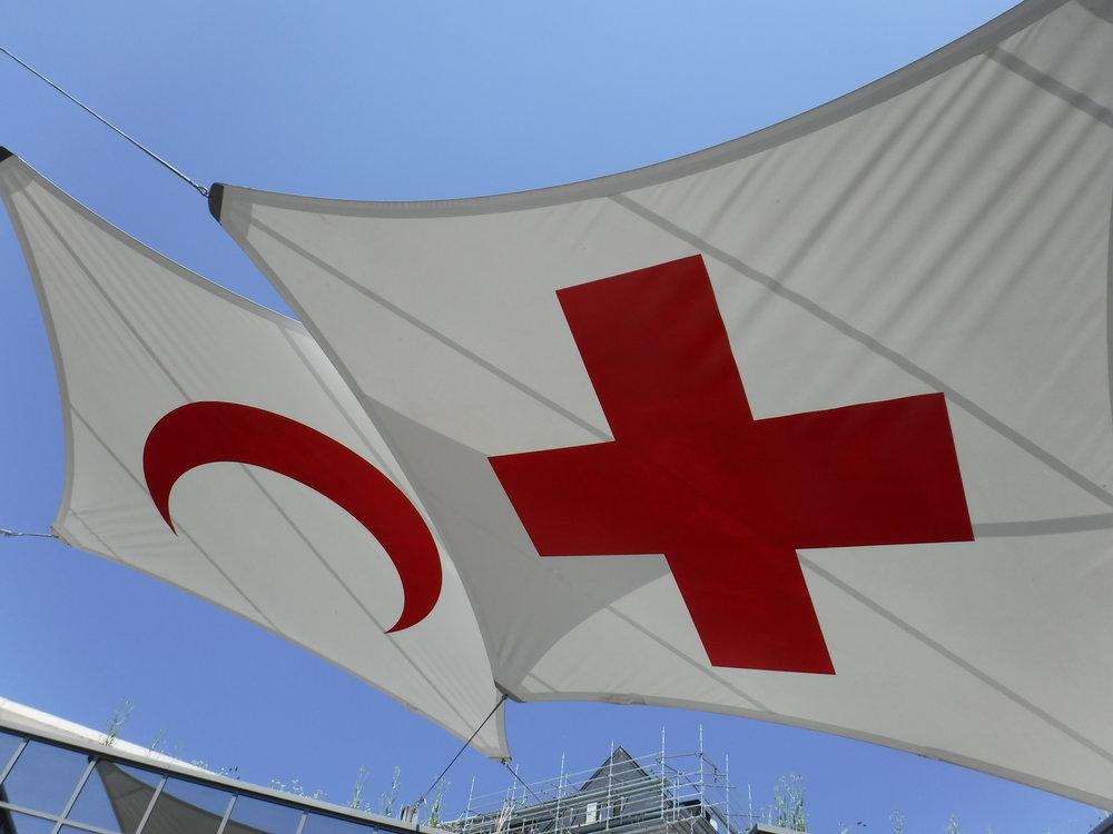 Switzerland_Geneva_RedCRoss.JPG