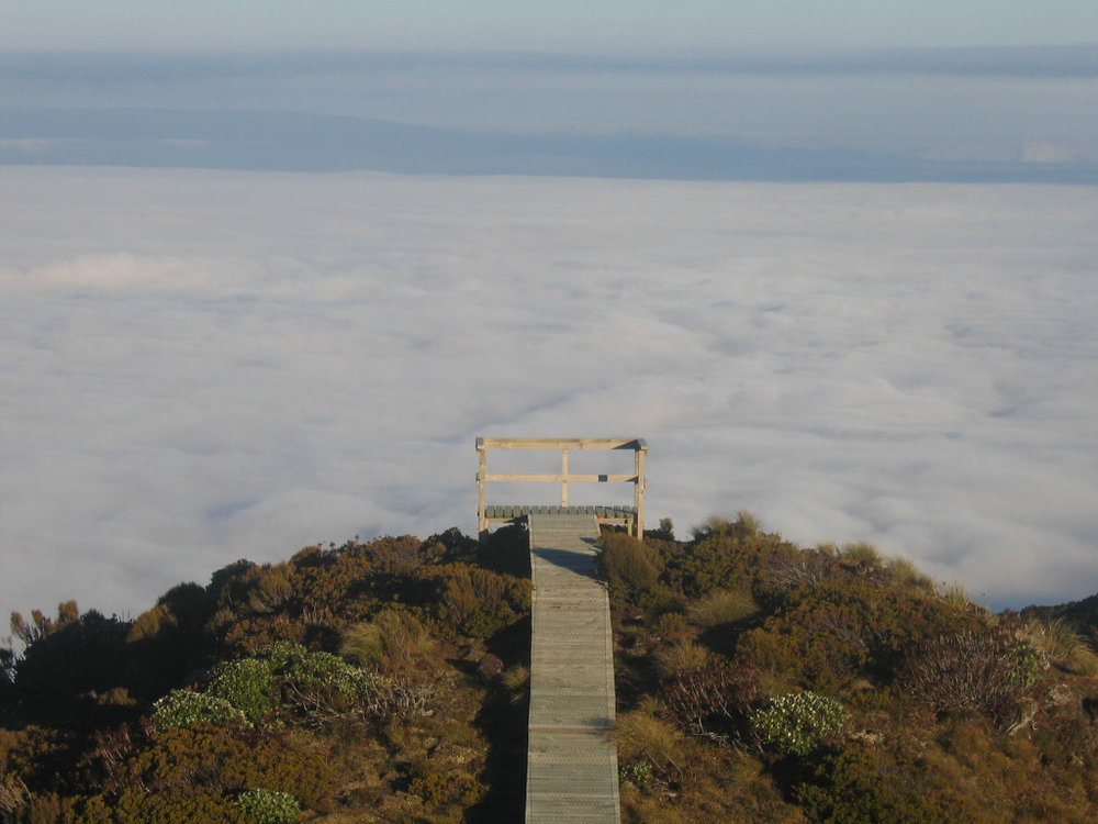 Summit-Track-Lookout-1.jpg