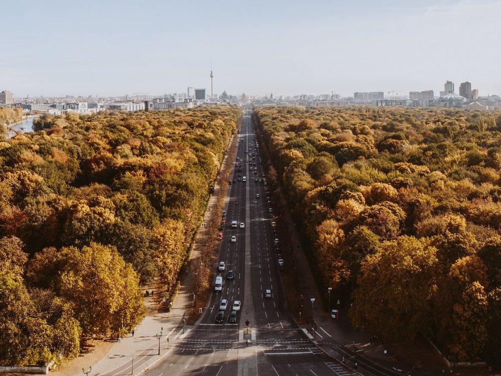 Tiergarten -